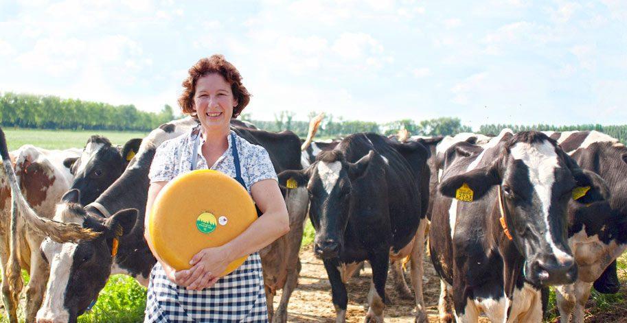 kaasboerderij-van-Rossum boerderijeducatie